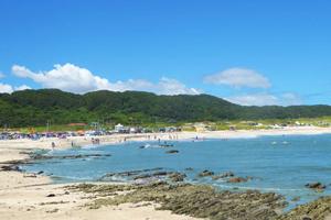 根本海岸の画像