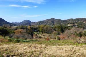 馬森牧場から伊予ヶ岳を望む