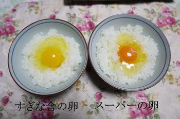 すぎな舎の卵かけご飯