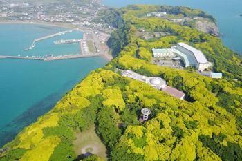大房岬の空撮画像