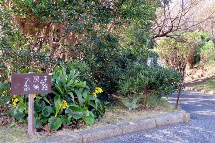 大房岬散策路の看板