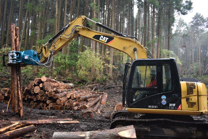 切った木の積み上げ作業
