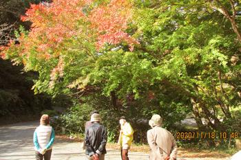 紅葉の見学(小松寺)