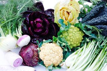 サラダ用の野菜